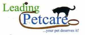 Cat with Your Pet Deserves It