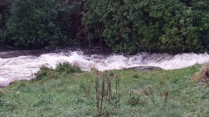 River Gryffe in spate