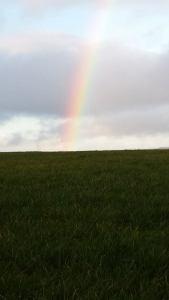 Rainbow Houston