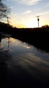 Sundown Barochan