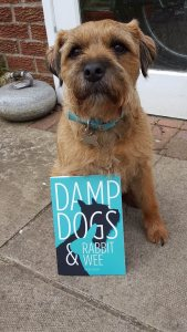 DOUGAL - the wee scamp gets a mention!