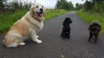 Sadie & Violet - true scale!