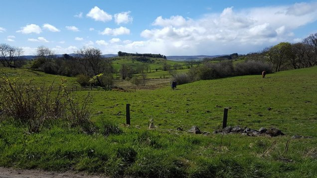 Houston - fields to Kilmacolm